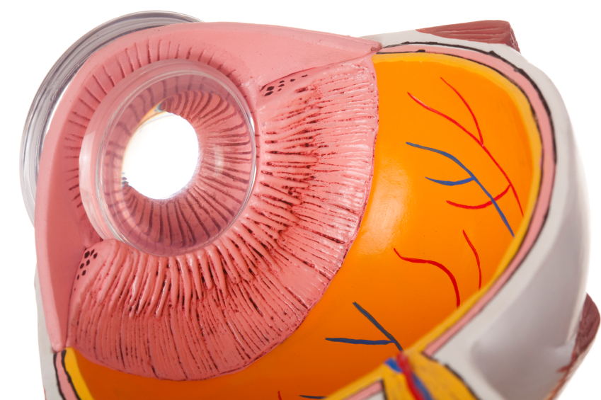 Natural Approach To Glaucoma And Eye Pressure