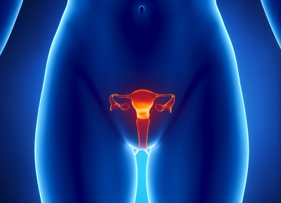 Uterine Fibroids Supplementation | Swansonhealthcenter com