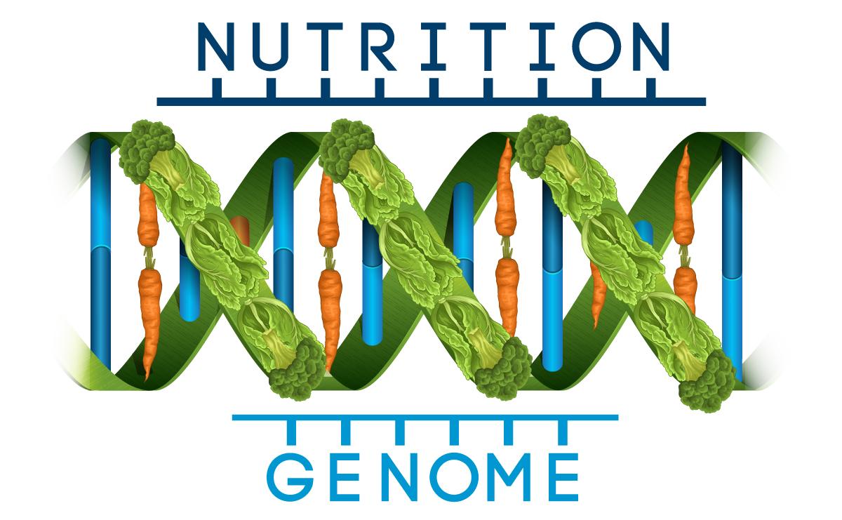 Nutrition Genome Logo