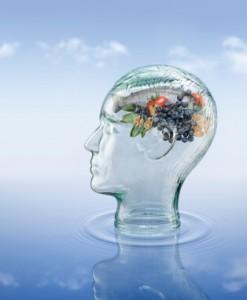 topics brain food