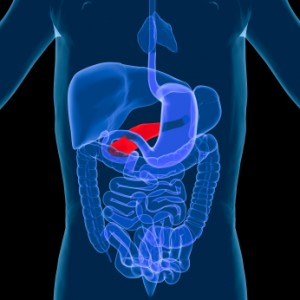 the best diet for pancreatitis
